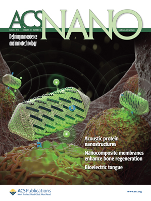 in nanotechnology of bone regeneration